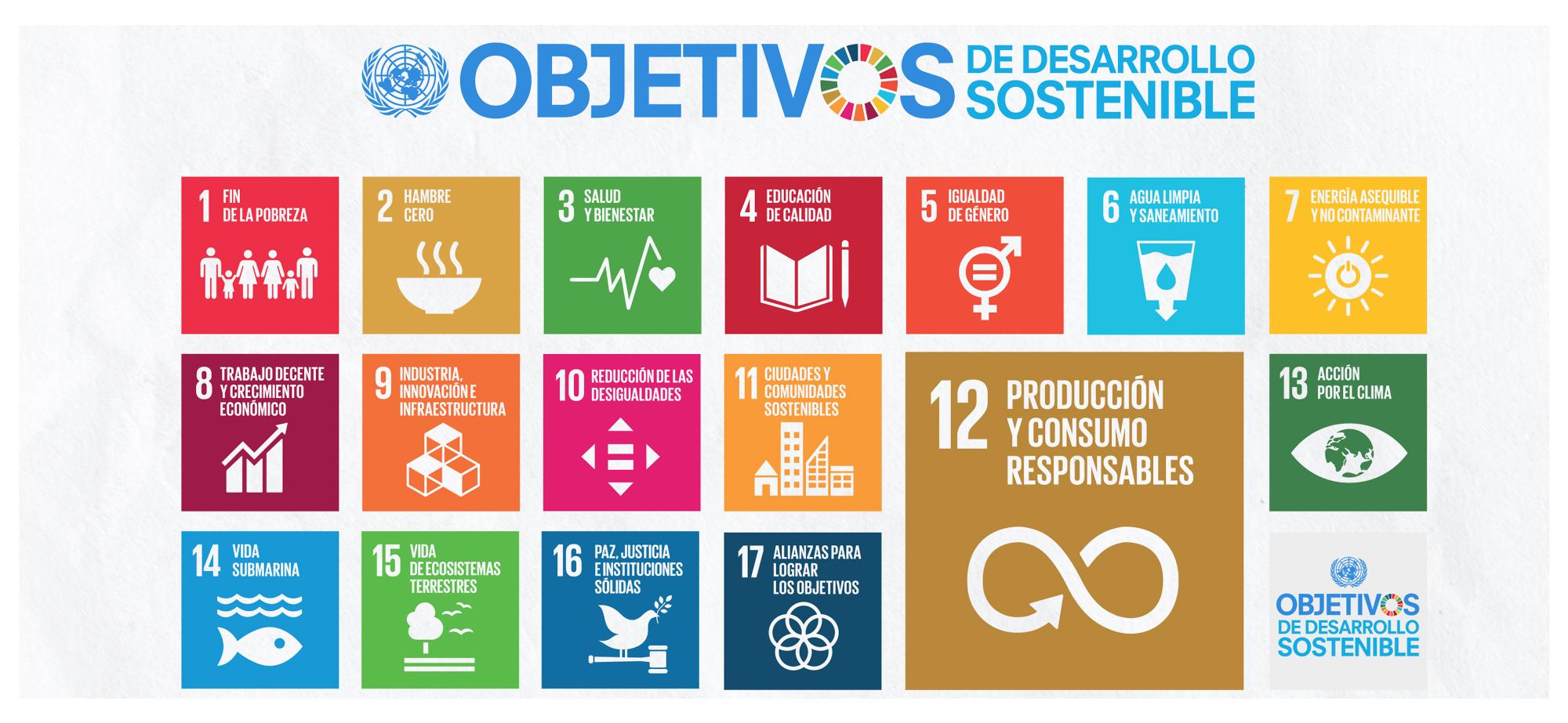 Los 17 Objetivos de Desarrollo Sostenible de la ONU infografía
