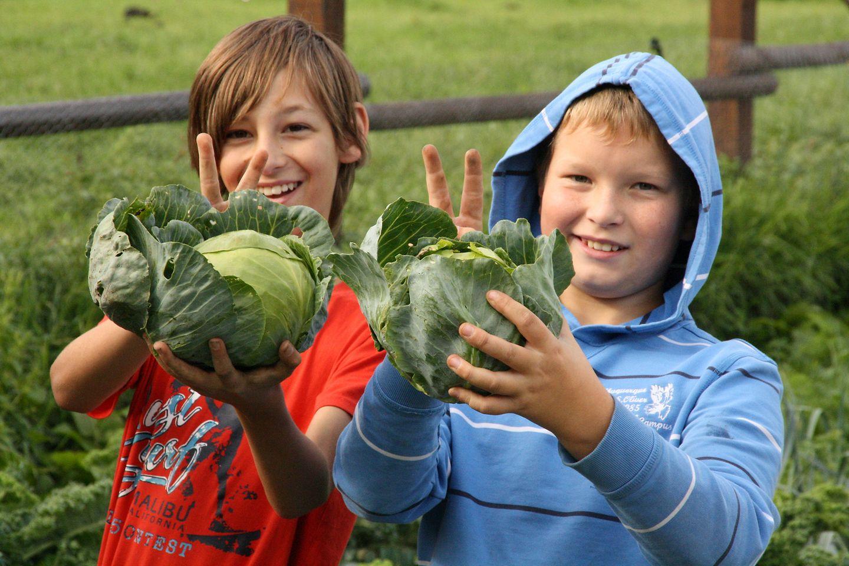 In der GemüseAckerdemie lernen Kinder alles rund um Lebensmittel, Natur und das soziale Miteinander.