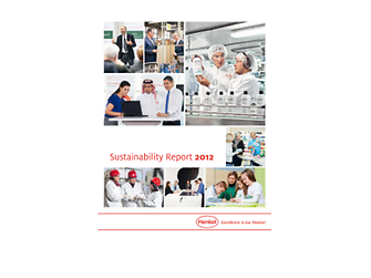 2012-sustainability-report-en-COM.pdfPreviewImage