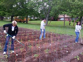 Henkel Finance employees gardening