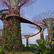 Gardens by the Bay, a tourist attraction in Singapore, made its walkways and staircases safer by applying Loctite BigFoot Anti-Slip.