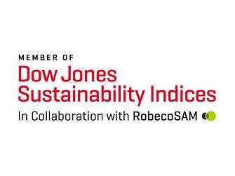 Dow Jones Sustainability Indices Logo