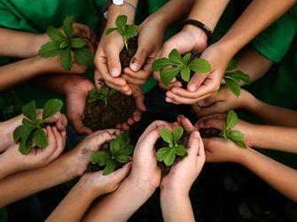 """Bei """"Projekt Futurino"""" stehen Projekte im Vordergrund, bei denen Kinder mehr über die Natur und den verantwortungsvollen Umgang mit natürlichen Ressourcen lernen sollen"""
