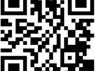 Bref Balls Dream Band QR code