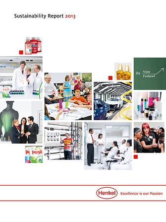 Cover Sustainability Report 2013