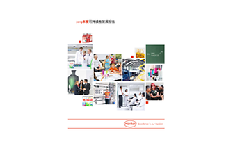 2013-Sustainability-Report-zh-CN.pdfPreviewImage
