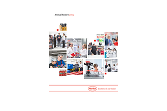 2014-02-20-Rapport Annuel 2013.pdfPreviewImage