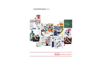 2014-02-20-Rapport Développement Durable 2013.pdfPreviewImage