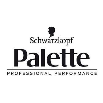 palette-logo-it-IT.png