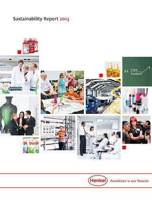 Správa o trvalo udržatel(nom rozvoji 2013 (Cover)