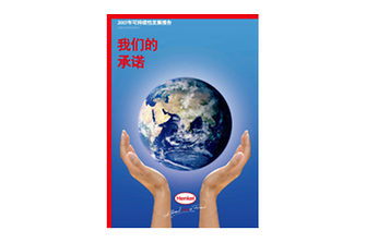 2007-Sustainability-Report-zh-CN.pdfPreviewImage