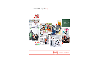 2014-02-20-driving-solutions-for-sustainable-development-report-jp.pdf.pdfPreviewImage