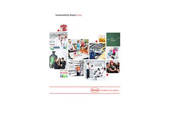 2013年度可持续性发展报告(封面)