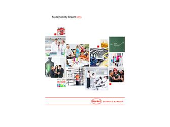 Rapport om bærekraftig utvikling 2013 (Cover)