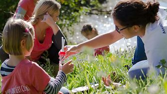 Children discovering the world of insects