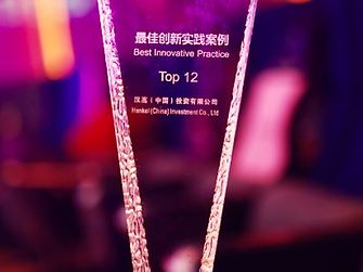 "The ""Top 12 Innovative Practice Cases"" Trophy"