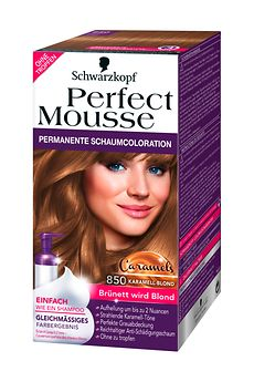 Perfect Mousse Caramels Karamell-Blond (PM 850)