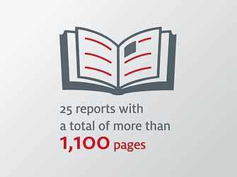25 Sustainability Reports witeh 1,100 pages