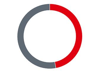 Donut graphic proportion of total Henkel sales