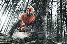 Chain saw Husqvarna 550 XP® in action