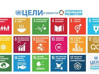 Цели ООН в области устойчивого развития (SDG).