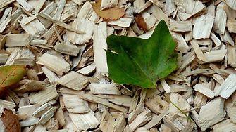 Transformer des déchets végétaux en composants pour les adhésifs, une initiative du projet GreenSolRes dont Henkel est un partenaire.