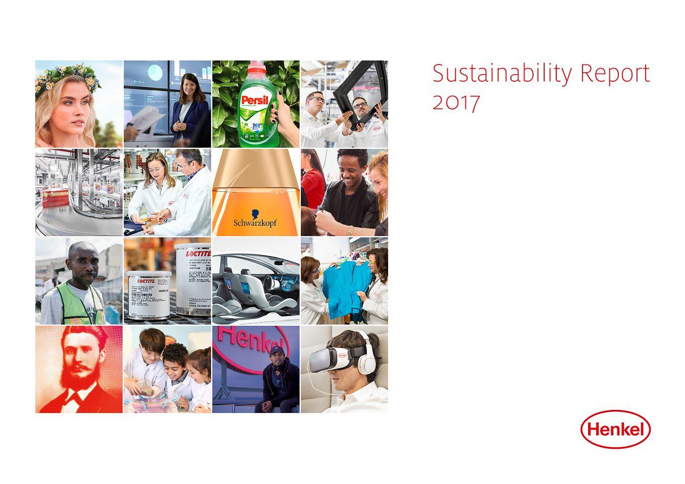 Звіт про стійкий і стабільний розвиток 2017 (обкладинка)