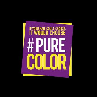 pure_color_logo