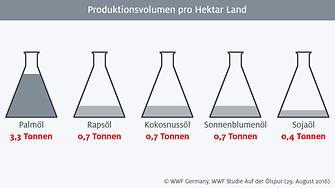 Infografik: Produktionsvolumen pro Hektar Land