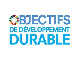 F_SDG_logo_No-UN-Emblem_square