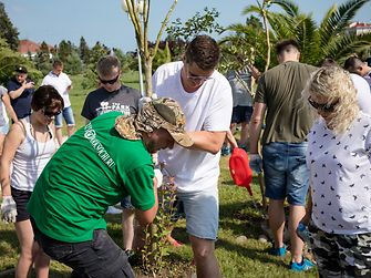 Участники акции высадили около 60 деревьев, которые станут укрытием и кормовой базой для птиц